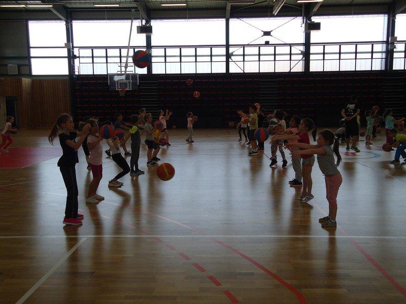 basket-33